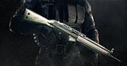 Platinum weapon skin