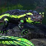 The Elder Scrolls Online - Newcomer Pack