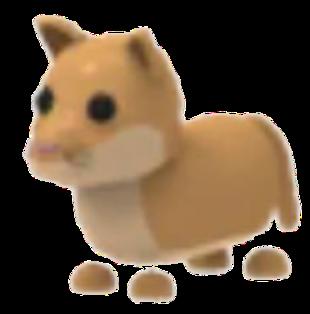Puma(Uncommon)
