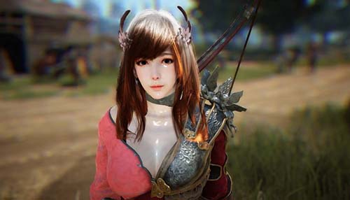 BDO Character Features