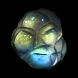 Glassblower's Bauble * 100