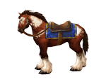 Pinto Bridle(WoW Classic)